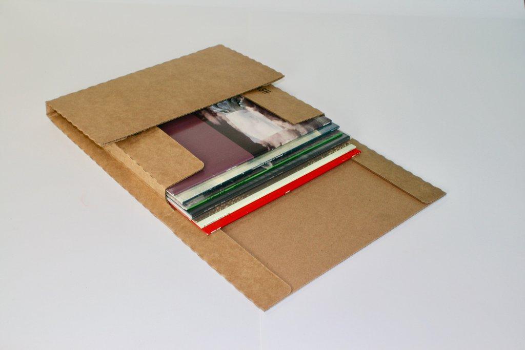 Whiplash LP Mailer V03 - Pack of 25